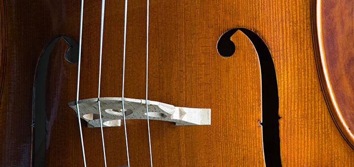 See the Atlanta Symphony Orchestra