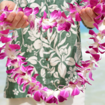 Daily life: Attend a Luau
